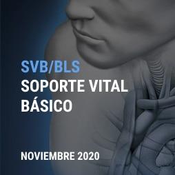 BLS NOV 2020